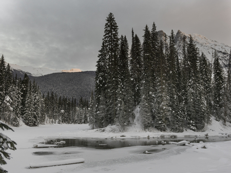 Stream flowing in snow covered valley in winter, Emerald Lake, Yoho National Park, British Columbia, Canada