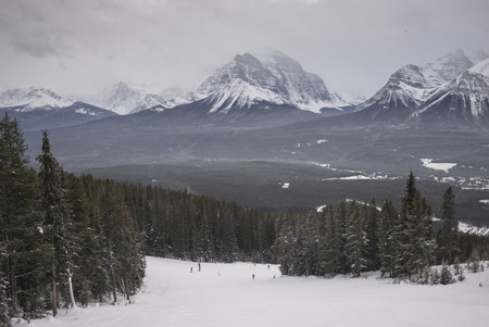 People skiing, Lake Louise, Banff National Park, Alberta, Canada