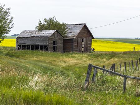 Abandoned barns at farm, Southern Alberta, Alberta, Canada Stock Photo