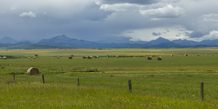 Hay bales at farm with mountains in background, Pincher Creek, Southern Alberta, Alberta, Canada Stock Photo