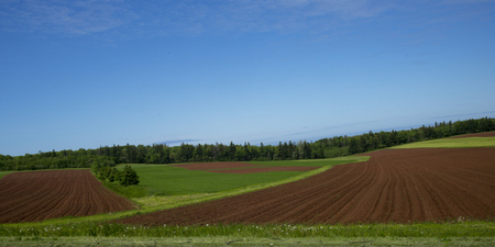 Scenic view of ploughed field, Breadalbane, Prince Edward Island, Canada