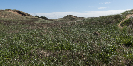 Scenic view of grassy hills, Green Gables, Cavendish, Prince Edward Island National Park, Prince Edward Island, Canada