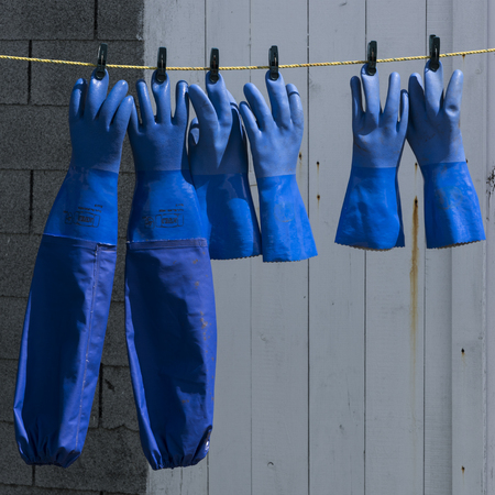 Fishing gloves hanging at harbor, West Dover, Halifax, Nova Scotia, Canada