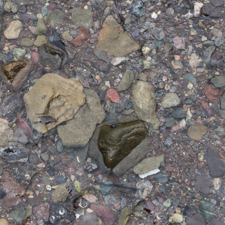 Close-up of pebbles in shallow water, Fundy National Park, Alma, New Brunswick, Canada Stock Photo