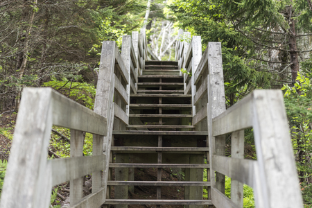 Wooden staircase in Fundy National Park, Alma, New Brunswick, Canada