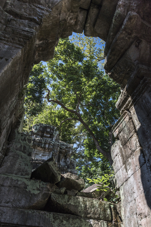 Ruins of Ta Prohm Temple, Angkor Archaeological Park, Krong Siem Reap, Siem Reap, Cambodia 스톡 콘텐츠