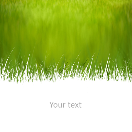 Creative natural background with room for your text Stock Photo