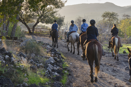 Tourists riding horses, Galilee, Israel