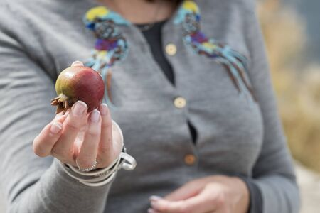 Close-up of woman holding pomegranate, Perast, Bay of Kotor, Montenegro Reklamní fotografie