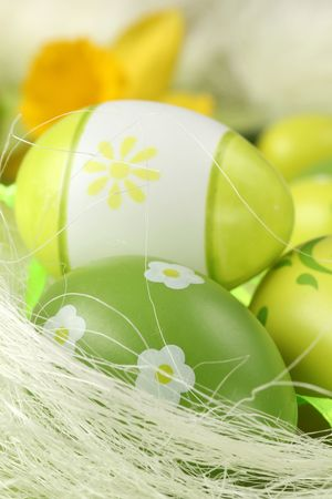 Green Easter eggs and yellow daffodil photo