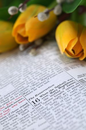 Open Bible with focus on the text in Mark 16: Resurrection Stock Photo - 6660307
