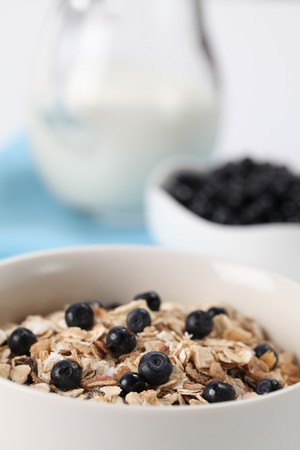 Granola with blueberries and milk. Shallow DOF Stock Photo - 7446393