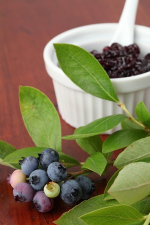 Blueberry jam Stock Photo - 7535214