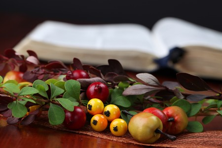 Autumn arrangement and the Bible in background. Shallow dof Stock Photo - 7778220