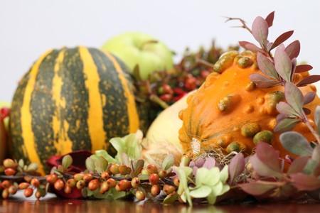 autumn arrangement: Autumn arrangement with various pumpkins. Shallow dof Stock Photo