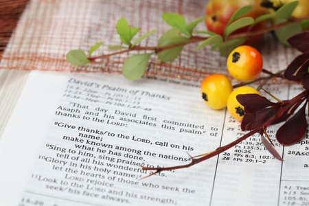Thanksgiving arrangement with the Bible open at 1 Chronicles 16:8