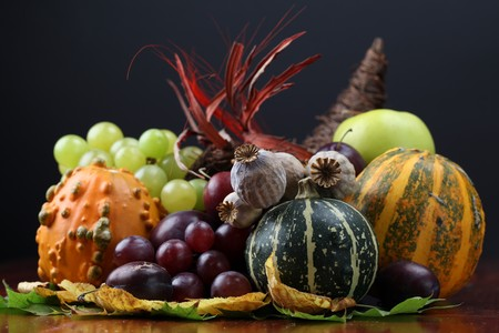 Autumn cornucopia - symbol of food and abundance Stock Photo - 7897638