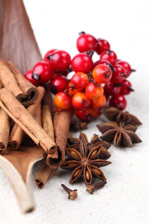 Cloves, anise and cinnamon with Christmas decorations. Shallow dof Stock Photo - 8119017