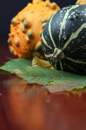 autumn arrangement: Autumn arrangement with colorful pumpkins. Shallow dof