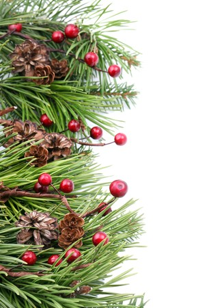 Christmas border with cones, berries and pine branches isolated on white background. Shallow dof