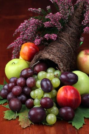 Füllhorn, Symbol von Lebensmitteln und Fülle, mit verschiedenen Früchten Standard-Bild - 8118898