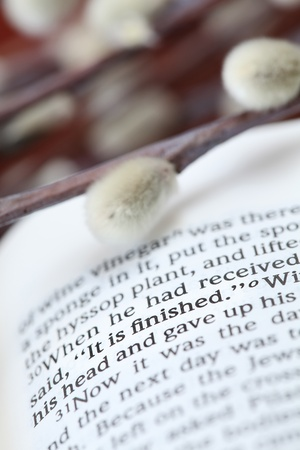Open Bible with selective focus on the text in John 19:30 with Jesus' last words on the cross: Stock Photo - 8562113