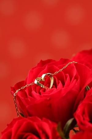Gold necklace with heart on red rose. Shallow dof photo