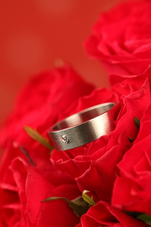 Titanium engagement ring with diamond in red rose. Shallow dof photo