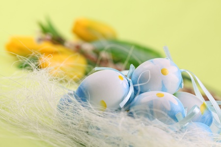 Blue Easter eggs and yellow tulips on a green background Stock Photo - 8771071