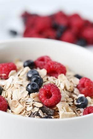 Granola with fresh organic raspberries and blueberries. Shallow DOF Standard-Bild