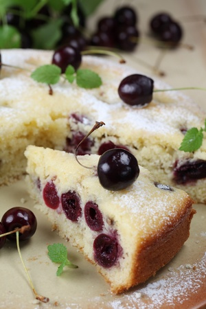 Sponge cake with black cherries. Shallow DOF photo