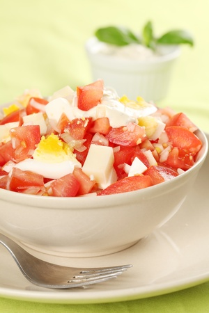 Tomato salad with eggs, cheese and onion photo