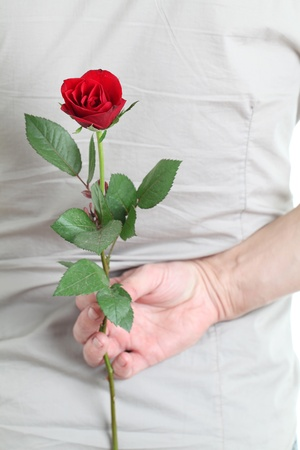 gift behind back: Man holding a red rose behind his back