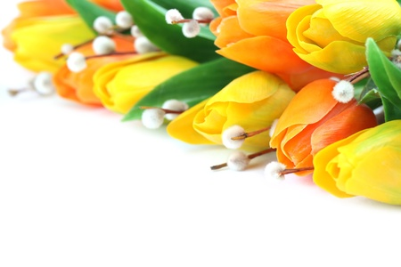 Border made of plastic orange and yellow tulips and catkins isolated on white background