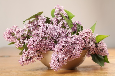 Beautiful pink lilac in a vase. Shallow dof photo