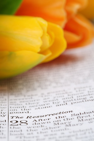 Open Bible with selective focus on the text in Matthew 28 about Resurrection Stock Photo - 12588121