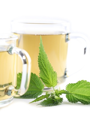 Nettle and freshly made nettle tea in glass cups isolated on white background  Shallow dof, focus on nettle photo