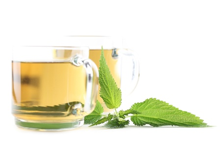 Nettle and freshly made nettle tea in glass cups isolated on white background  Shallow dof, focus on nettle Stock Photo - 14530238