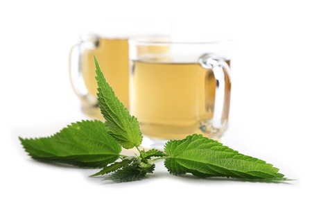 Nettle and freshly made nettle tea in glass cups isolated on white background  Shallow dof, focus on nettle Stock Photo - 14530241