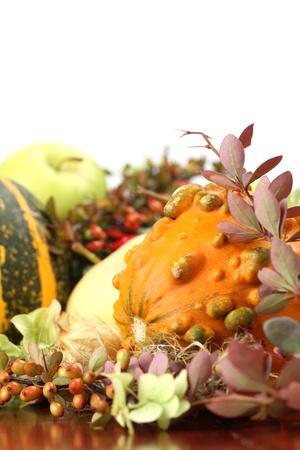 autumn arrangement: Autumn arrangement with various pumpkins  Shallow dof