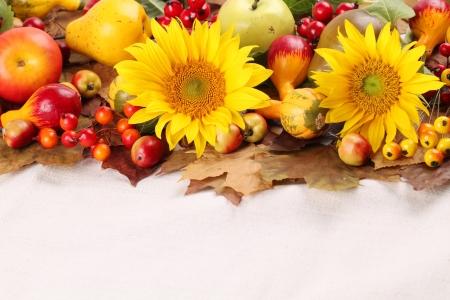 accion de gracias: Oto�o marco con las frutas, calabazas y girasoles