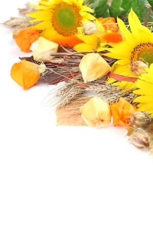 autumn arrangement: Autumn arrangement with sunflowers, physalis and barley