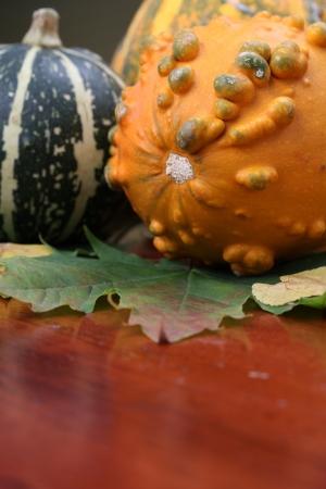 autumn arrangement: Autumn arrangement with colorful pumpkins  Shallow dof Stock Photo