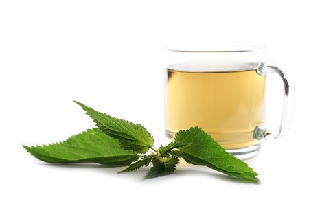 Nettle and freshly made nettle tea in a glass cup isolated on white background  Shallow dof, focus on nettle photo