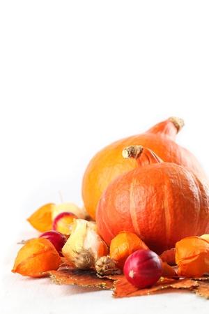 autumn arrangement: Autumn arrangement with Hokkaido pumpkins, physalis on white background Stock Photo