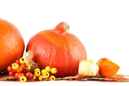 autumn arrangement: Autumn arrangement with Hokkaido pumpkins, berries and physalis on white background Stock Photo