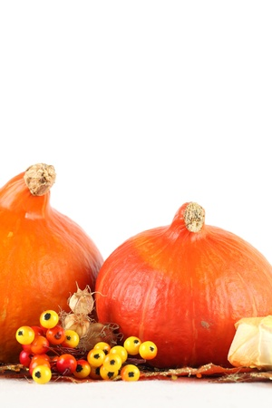 Autumn arrangement with Hokkaido pumpkins, berries and physalis on white background photo