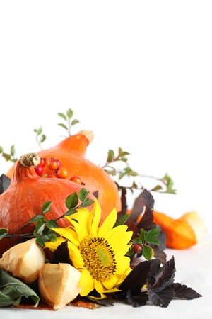 autumn arrangement: Autumn arrangement with Hokkaido pumpkins and sunflowers on white background