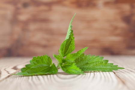 Close-up of fresh stinging nettle on wooden background  Shallow dof photo