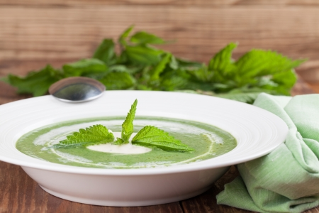 Nettle cream soup with sour cream  Shallow dof